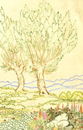 22 НИКОЛАЙ РАЙНОВ - Две дървета