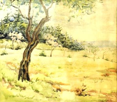 81 СТЕФАН БАДЖОВ - Самотното дърво