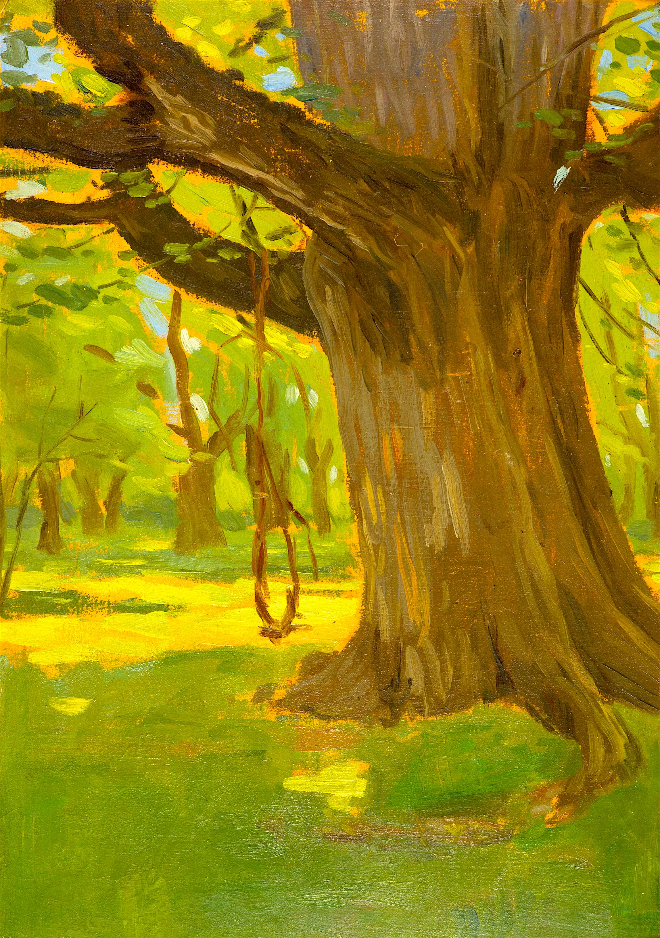 18 Станьо Стаматов - Старото дърво