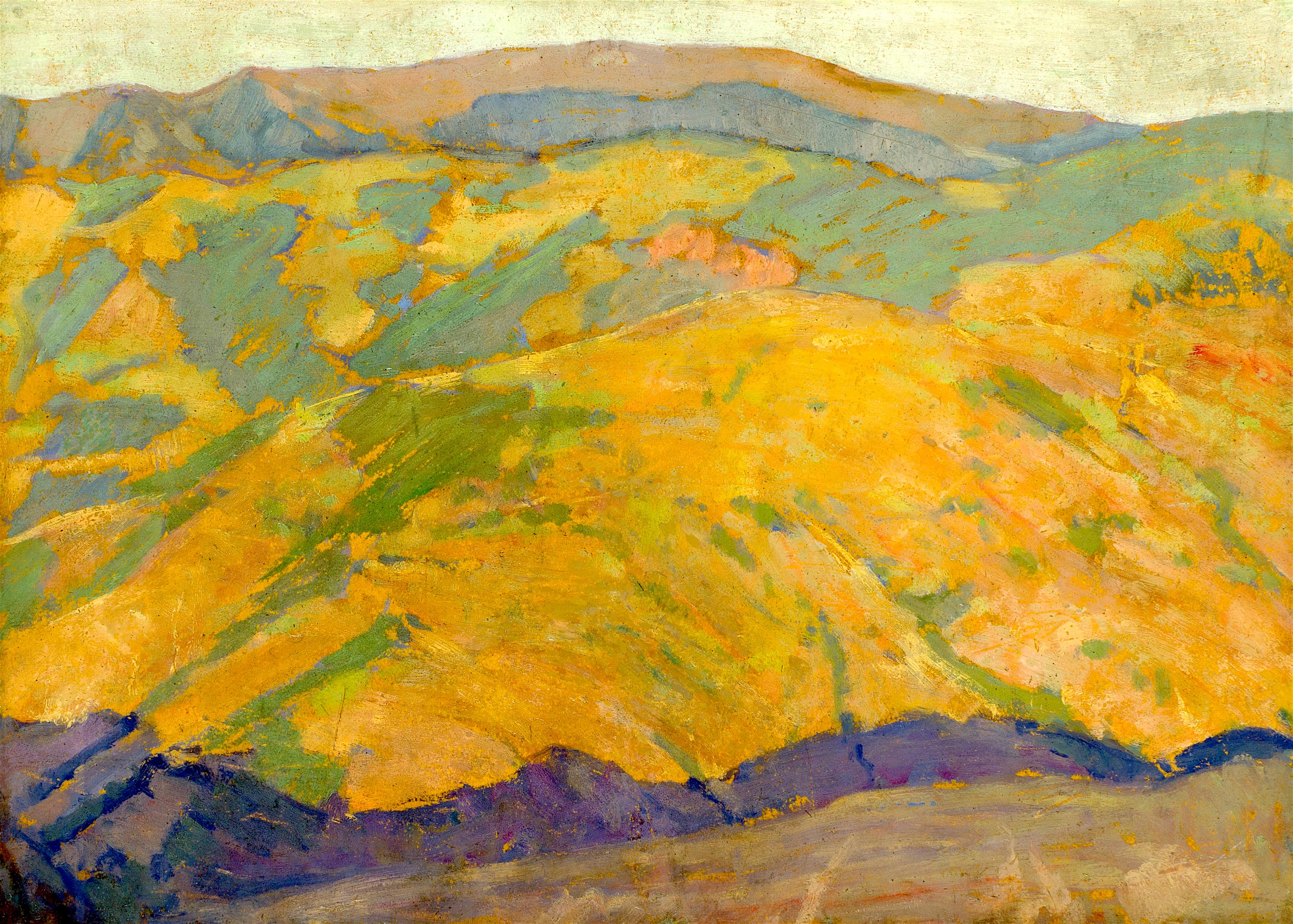 50 Давид Перец - Родопски пейзаж